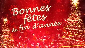 Le GRETA du Choletais vous souhaite de très bonnes fêtes de fin d'année